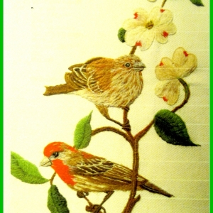 Dogwood and House Finches